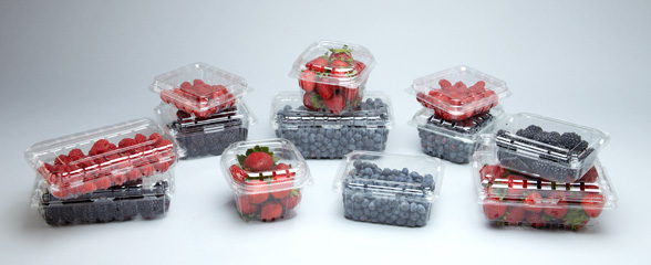 Image for Fruit Clamshells from WWP